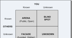 The Johari Window