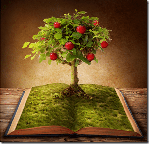 The Age of Wisdom