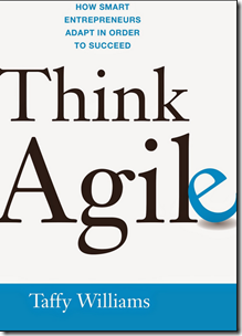 Interview – Taffy Williams on How Entrepreneurs Can Think Agile